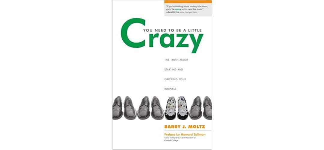 Review: You Need to be a Little Crazy by Barry J. Moltz